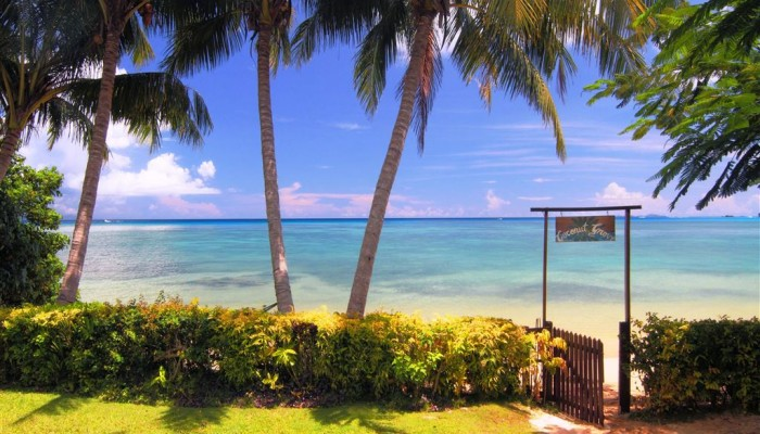 Hotel Coconut Grove Beachfront Cottages Taveuni - Strand - Fiji